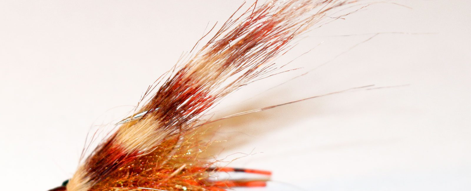 Drum food: Fly Fishing